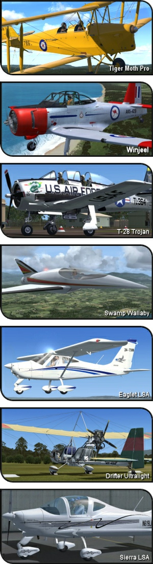 Ant's Airplanes